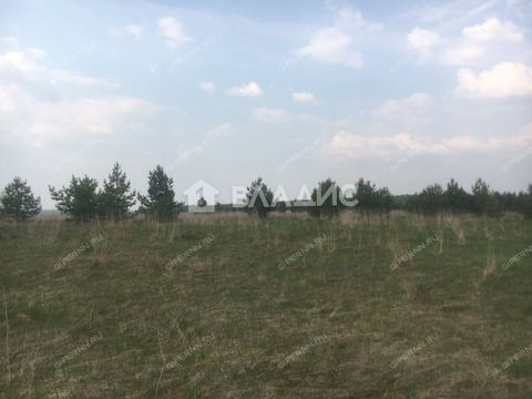 selo-armaniha-dalnekonstantinovskiy-rayon фото