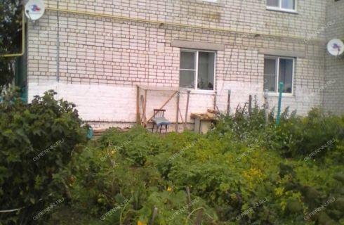 2-komnatnaya-derevnya-shadrino-gorodeckiy-rayon фото