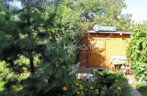 dom-selo-selishhi-gorodskoy-okrug-bor фото