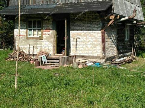 sad-derevnya-orinkino-bogorodskiy-rayon фото