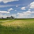 «Дальневосточный гектар» можно будет получить в Бурятии и Забайкальском крае